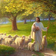 Image Jesus, Jesus Christ Images, Lds Pictures, Jesus Pictures, Lord Is My Shepherd, The Good Shepherd, Christian Messages, Christian Art, Greg Olsen Art