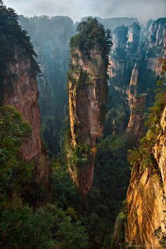 Zhangjiajie National Forest Park, the inspiration for the mountains in Avatar