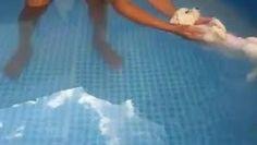 ★ Brilliant Blue ★ Só pra relaxar, pessoal, boa noite bem baixinho, viu... Boa noi... te... (VIDEO) https://www.facebook.com/gabriela.tiikkainen/posts/977311662299008?pnref=story
