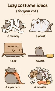 Halloween costume ideas for your cat!!!