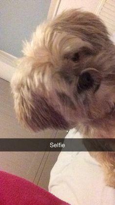 Loves a morning selfie