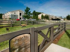 Let your dog play to its heart's content in this spacious dog park! | Community: The Aventine #Apartments in #Greenville, SC » http://apt.gd/1dpSR0u