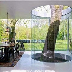Love this concept - could be anything in a glass enclosure exposed to the elements.