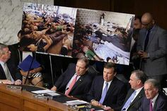 Senators view photographs of victims of chemical weapons attacks in Syria at a Senate Foreign Relations Committee hearing on Tuesday, Sept. 3, 2013, in Washington, D.C. . Antiwar Democrat says intell manipulated to favor war. Well at least he is consistent , that is what they all said about it with Bush.