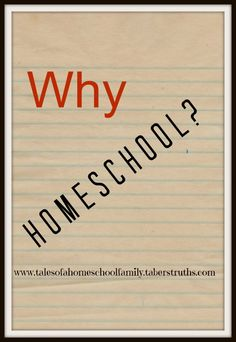 I can give you a couple dozen reasons why you should homeschool.  We could debate upon test scores, the myths of socialization and more   Instead, I'd like to use an example from YOUR OWN life….    Why Homeschool? | Tales of a Homeschool Family