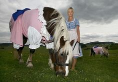Horse dressed in traditional Bavarian Dirndl costume - Lifestyle News - SINA English