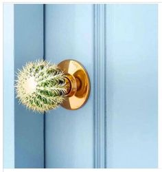 "686 Likes, 22 Comments - Sarah (@the_introverted_chick) on Instagram: ""Some may say a cactus for a doorknob is impractical, but I'm thinking there are more than a few…"""