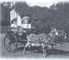 Grand Duchess Tatiana Romanov with her older sister Grand Duchess Olga Romanov