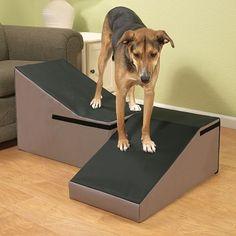 Doctors Foster & Smith Dura Ruff Indoor Pet Ramp