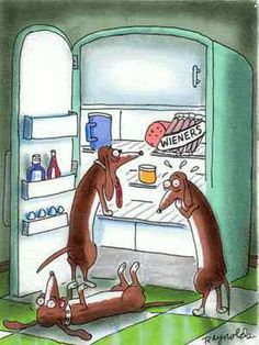 dachshund cartoons | dachshunds miniature dachshund puppies long and smooth coat dachshunds ...