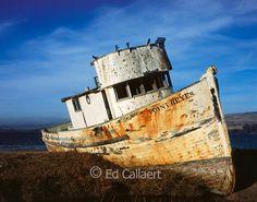 Point Reyes National Seashore; California; Marin County California