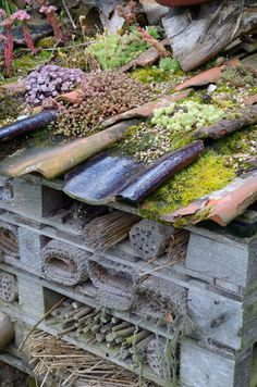 Large bug hotel made from recycled pantiles, old pallets and other recycled items - © Gary Smith/GAP Photos