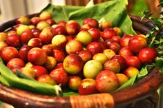 Camu Camu can cure herpes in 48 hours!  [I  don't know if this is true;but, it is a treatment for HPV, which is the problem; as does a brown seaweed]