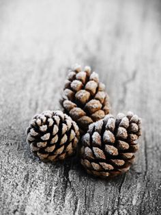 Frosted Pine Cones on Rustic Wooden Table Photographic Print