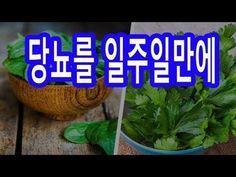 먹기만 하면 당뇨병 막아주는 놀라운 효능 식품 5가지 - YouTube Herbal Remedies, Natural Remedies, Influenza B, Medicinal Plants, Healthy Chicken Recipes, Health Benefits, Herbalism, Health Care
