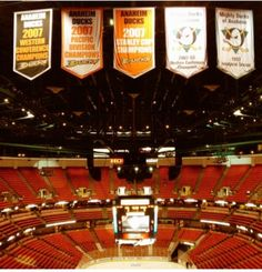 Anaheim Ducks - championship banner