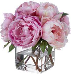pink peonies flowers by Diane James