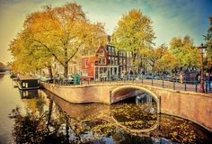An insider's guide to Amsterdam's hippest neighbourhoods https://www.lonelyplanet.com/the-netherlands/amsterdam/travel-tips-and-articles/an-insiders-guide-to-amsterdams-hippest-neighbourhoods/40625c8c-8a11-5710-a052-1479d2761f7f