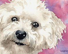 Impression d'Art BICHON frisé par aquarelle artiste DJ Rogers Watercolor Animals, Watercolor Paintings, Frise Art, Dog Signs, Print Artist, Dog Portraits, Animal Paintings, Dog Art, Art Prints
