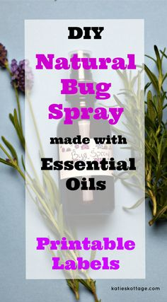 DIY Natural Bug Spra