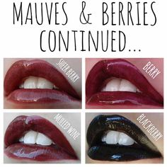 lipsense lip color swatches berries