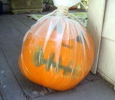 Drowning In A Bag- my favorite pumpkin
