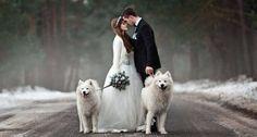 """Képtalálat a következőre: """"winter wedding"""""""