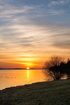 """""""Sunset"""" 