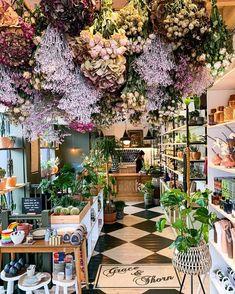 Dried flowers 💐 @graceandthorn Floral Wedding, Wedding Flowers, Flower Ceiling, Drying Roses, Bloom Blossom, How Beautiful, Dried Flowers, Flower Power, Garden Design