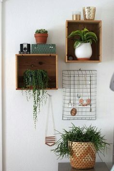 wooden box floating plants