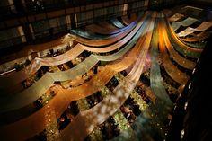 Overhead canopy inspiration.