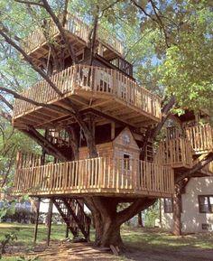 I want this tree house! a tree house I never had! Cool Tree Houses, Tree House Designs, Tree Tops, In The Tree, Big Tree, Play Houses, Dream Houses, Cabana, My Dream Home