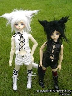 """Dolls Nekos... Não sou dessas """"Ahhh que fofo"""", mas gostei."""