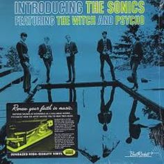 I checked out Introducing The Sonics Vinyl Lp on Lish, $19.95 USD