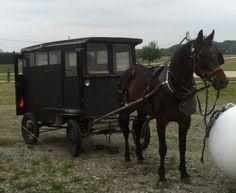 Old order buggy Gettysburg Ohio