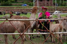 #Peru #Bigblogmap #southamerica #travel