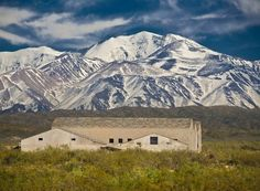 Conoce los #vinos de la bodega #Atamisque (Tupungato - #Mendoza) en nuestra Web!