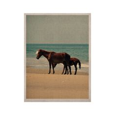 "Robin Dickinson ""Sandy Toes"" Beach Horses KESS Naturals Canvas (Frame not Included)"