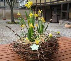 floristik design - Google-Suche
