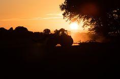 Österlen, Sunset farming, Skåne, South of Sweden
