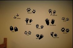 12 Animal Tracks Set Prints Hunting Wall Decor Decals