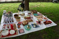 Denise Reds: zé colmeia - picnic de festa