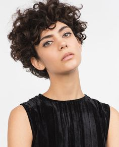 Want help along with some tips on hair care? Short Curly Cuts, Short Curly Hairstyles For Women, Short Wavy Hair, Curly Hair Cuts, Hairstyles Haircuts, Curly Hair Styles, Pelo Rasta, Androgynous Hair, Hair Pictures