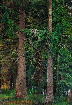 Еловый лес.Этюд 1889-1890 55х40