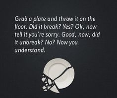 Oh, wow! I'm going to use this analogy to teach my kids about trust! You can take it a little further: if you fix the plate, the cracks will always be visible (trust can be regained, but there will always be a bit of doubt)