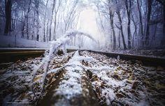 Um dia inteiro nos bosques gelados para capturar imagens magníficas do inverno