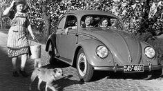 1951/52 VW Käfer