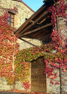 Country house. Villa Collemandina - Garfagnana Lucca - Italy