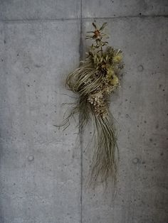 Pin by hika♡chiro on スワッグ Wreaths And Garlands, Fall Wreaths, Christmas Wreaths, Mesh Wreaths, Green Flowers, Pretty Flowers, Dried Flower Arrangements, Garden Stepping Stones, New Years Decorations