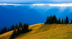 Afternoon at Olympic National Park by Fred Ling  on 500px